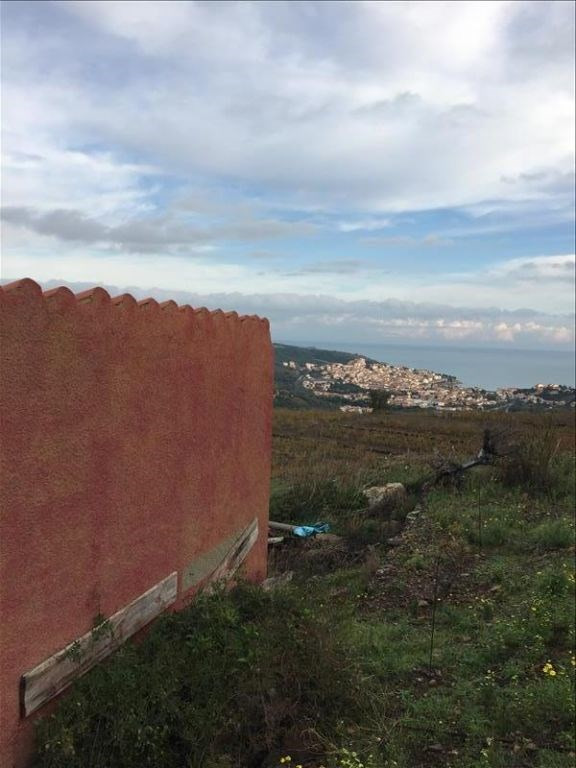 Vente terrain Banyuls sur mer 44000€ - Photo 4