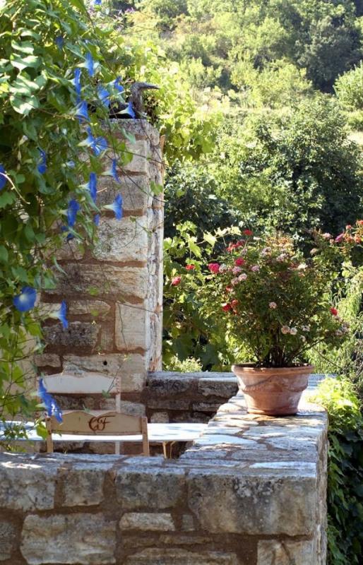Immobile residenziali di prestigio casa Barjac 525000€ - Fotografia 14
