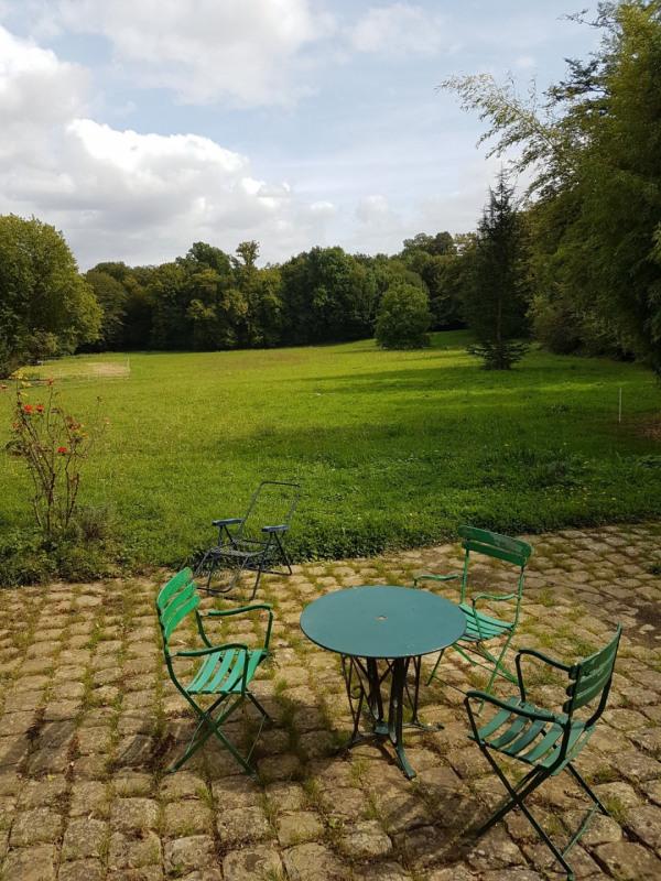 Vente de prestige château Le gault-soigny 550000€ - Photo 4