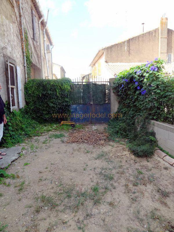 Viager maison / villa Saint-laurent-de-la-cabrerisse 130000€ - Photo 15
