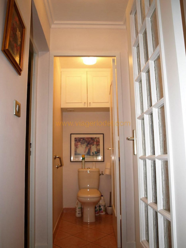 Viager appartement Oullins 48 000€ - Photo 17