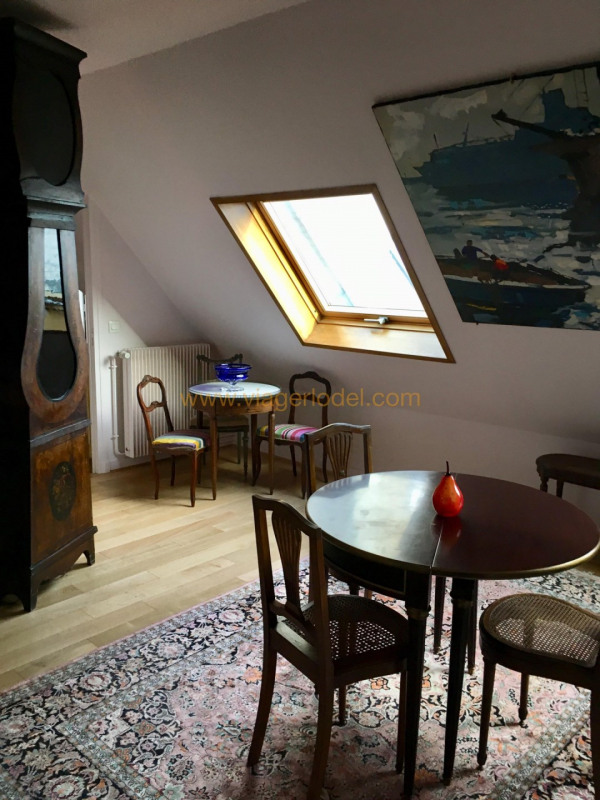 Viager appartement Paris 16ème 167 500€ - Photo 2
