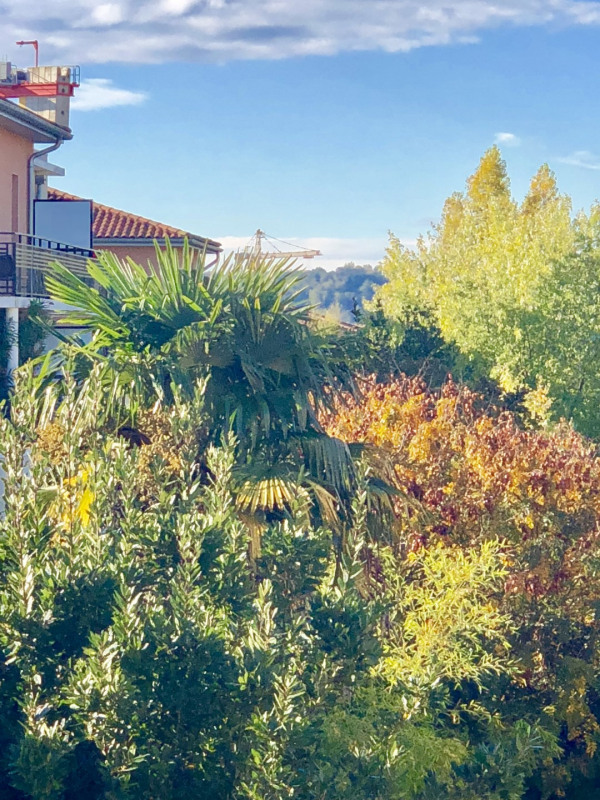 Sale apartment Toulouse 224 000€ - Picture 2