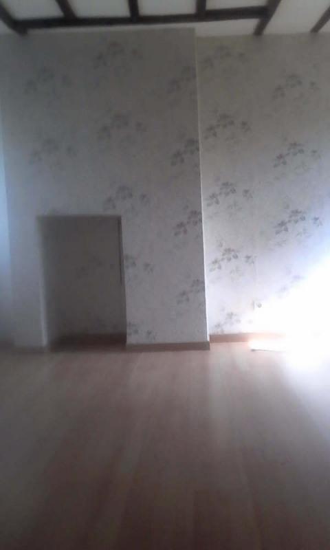 Sale house / villa Henrichemont 66000€ - Picture 2