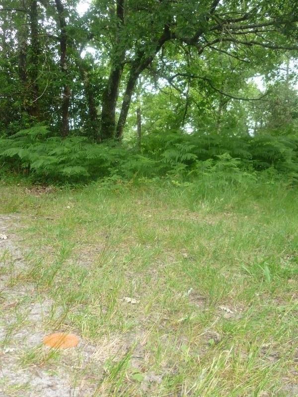 Vente terrain Gastes 126000€ - Photo 1