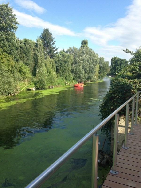 Location maison / villa Villennes sur seine 1100€ CC - Photo 9