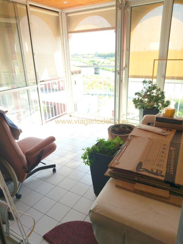 Viager appartement Lattes 130000€ - Photo 6
