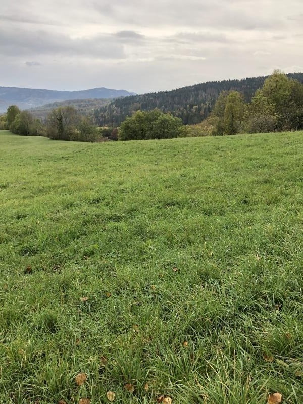 Vente terrain Echallon 95000€ - Photo 5