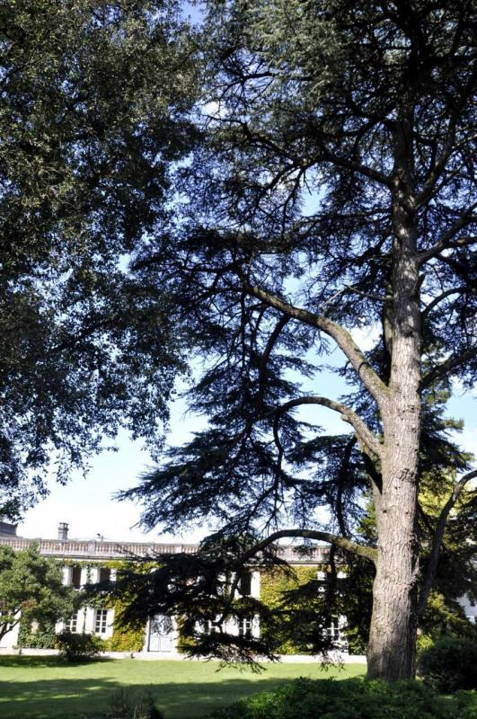 Vente de prestige maison / villa Genté 682500€ - Photo 13