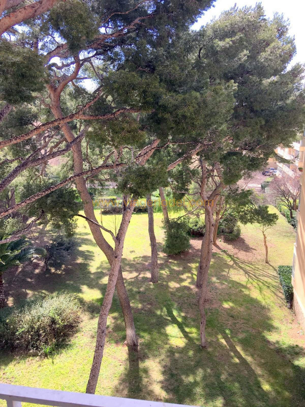 Life annuity apartment Toulon 45000€ - Picture 6