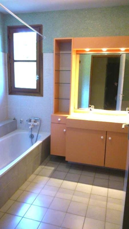 Rental house / villa Hauterives 950€ CC - Picture 11