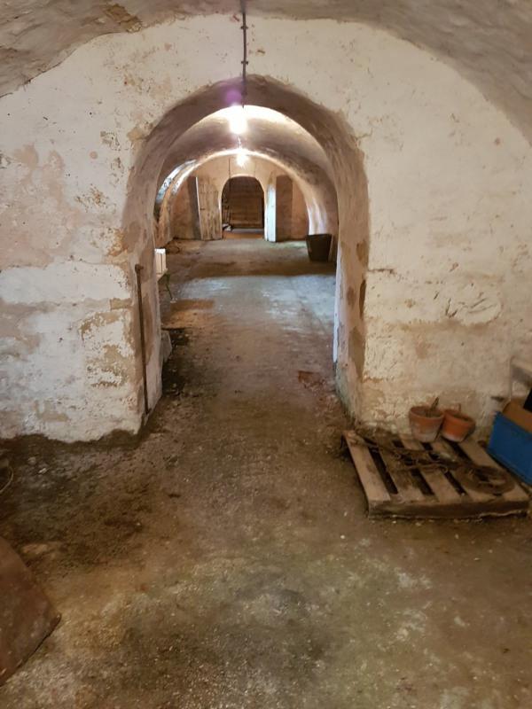 Vente de prestige château Le gault-soigny 550000€ - Photo 23