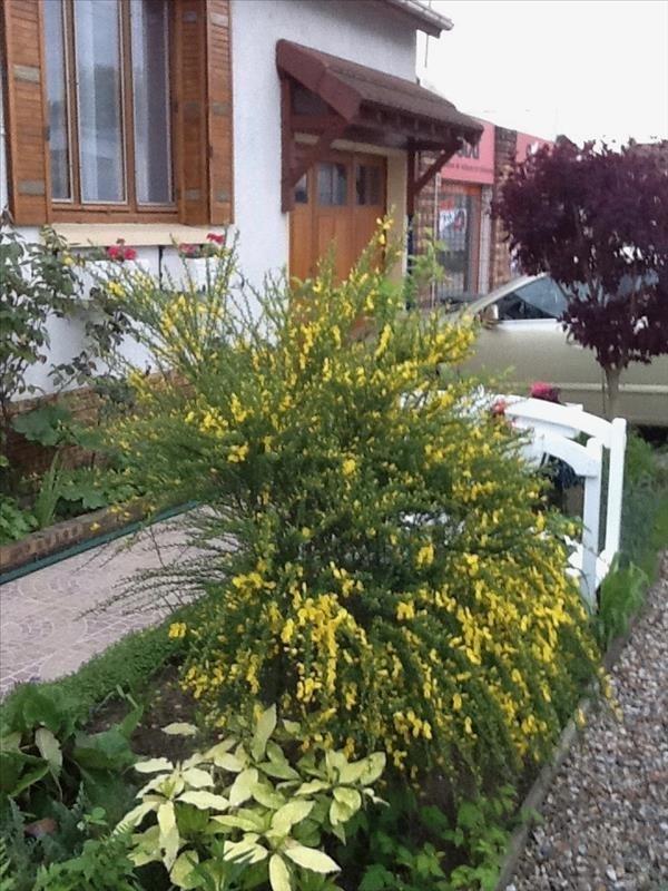 Sale house / villa Dammarie les lys 228000€ - Picture 3