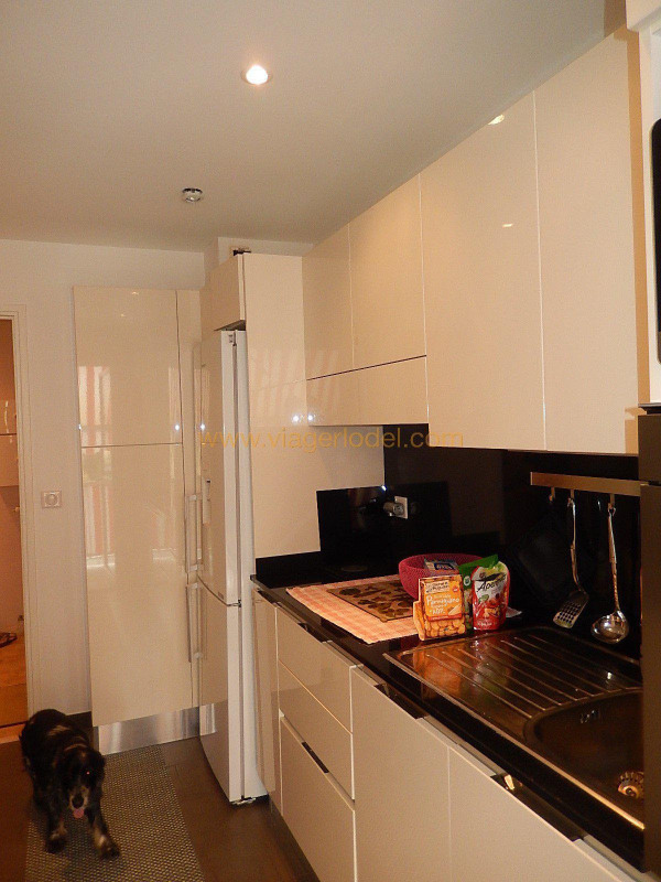Life annuity apartment Roquebrune-cap-martin 95000€ - Picture 7
