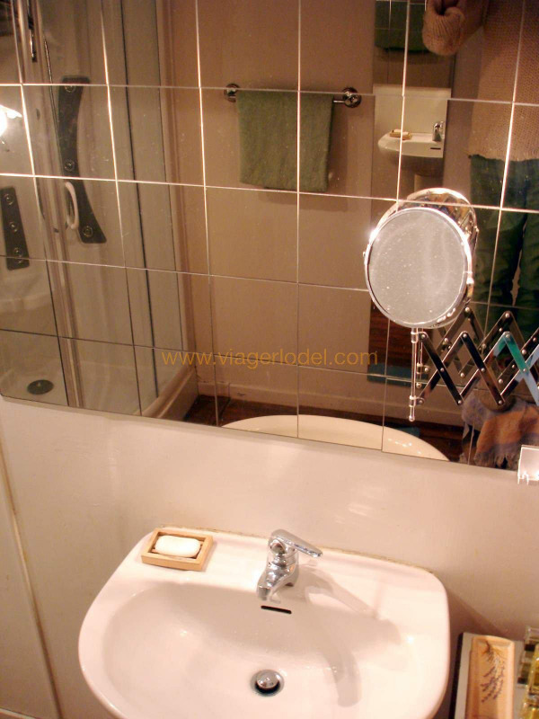 Vitalicio  casa Parfondeval 16500€ - Fotografía 9