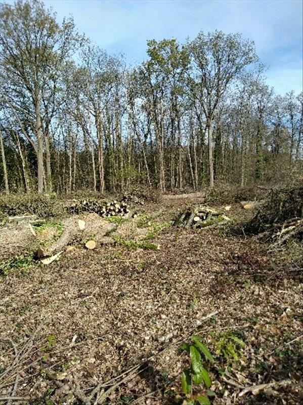 Vente terrain Cerans foulletourte 48500€ - Photo 1