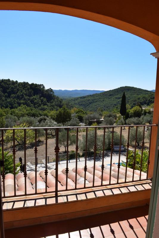 Deluxe sale house / villa Seillans 698000€ - Picture 37