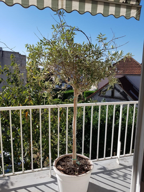 Sale apartment Soisy-sous-montmorency 280000€ - Picture 7