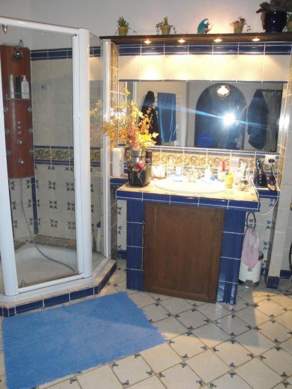 Vente maison / villa Le noyer 424000€ - Photo 11