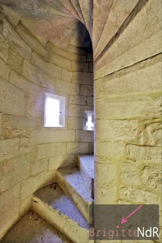Vente de prestige château St chamarand 1050000€ - Photo 7