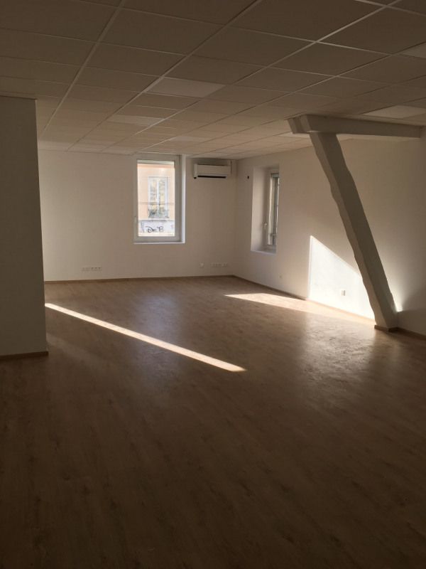 Rental empty room/storage Villeurbanne 1 750€ HC - Picture 1