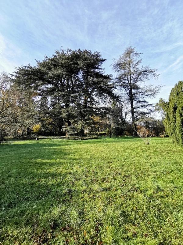 Sale house / villa St amans soult 485000€ - Picture 6