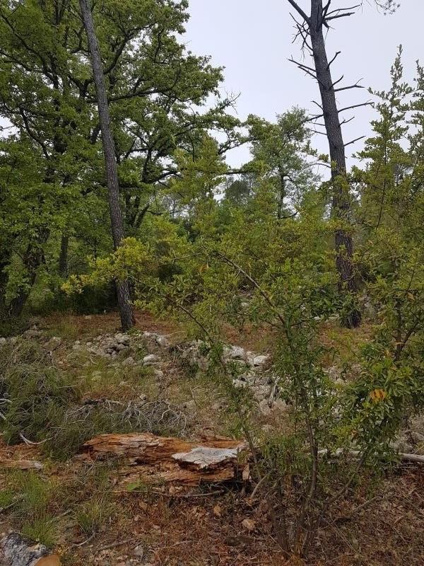 Vente terrain Brignoles 115990€ - Photo 3
