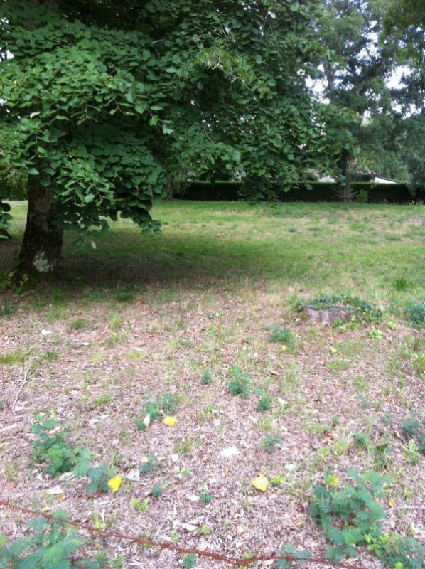 Vente terrain Azur 139000€ - Photo 1
