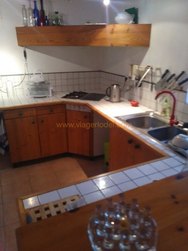Vitalicio  casa Revel 80000€ - Fotografía 4