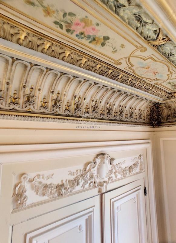 Vente de prestige appartement Lyon 6ème 1060000€ - Photo 10