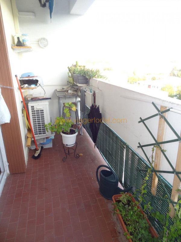Viager appartement Montpellier 49 000€ - Photo 4