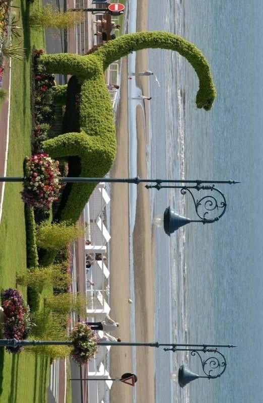 Vente parking Villers sur mer 6500€ - Photo 1