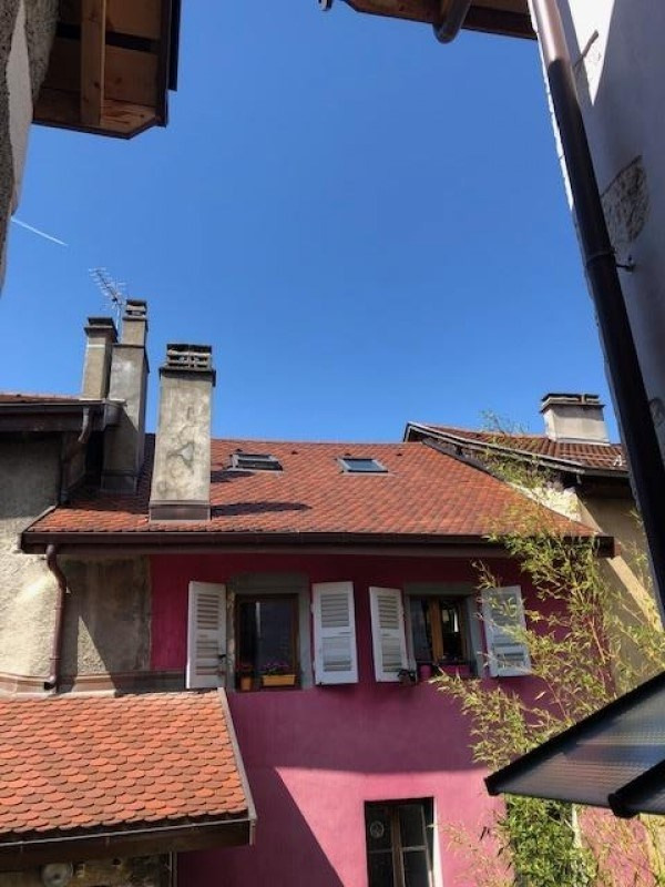 Vente loft/atelier/surface Annecy 339 000€ - Photo 3