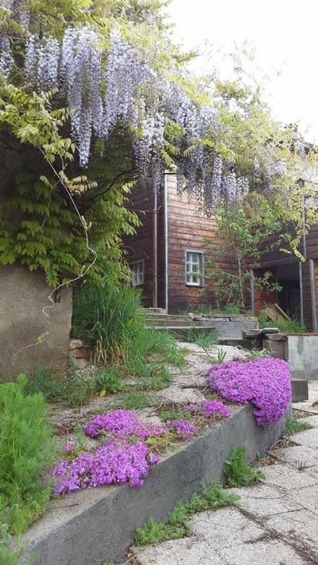 Vendita casa Albi 237300€ - Fotografia 2