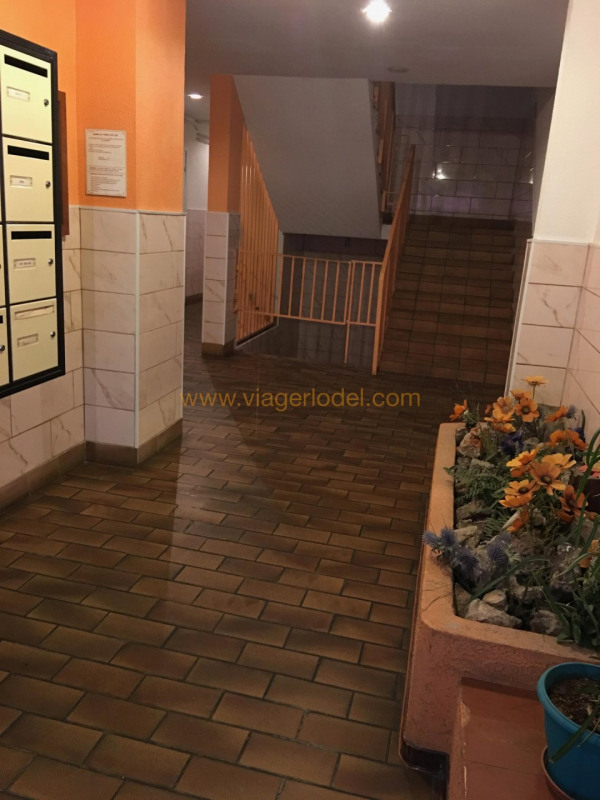 Viager appartement Toulon 32 500€ - Photo 4