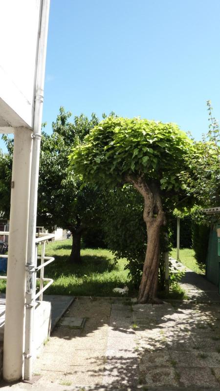 Rental apartment Albi 380€ CC - Picture 4
