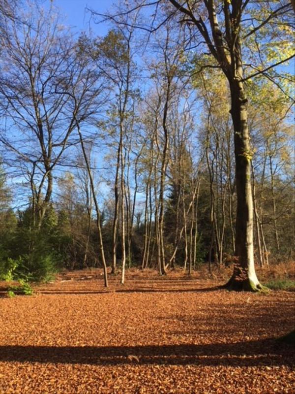 Vente terrain St gatien des bois 165000€ - Photo 4