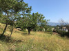 Terrain Mouans Sartoux 1130 m², 1130 m² - Mouans Sartoux (06370)