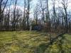 Plantation truffiere Bourlens