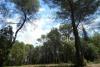 Terrain Roquefort-les-Pins