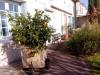 vente Maison / Villa  6 Pièce(s)  Montendre