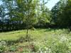 Site  Puy l Eveque