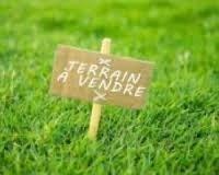 Sale site Saint-lumine-de-clisson 64900€ - Picture 1
