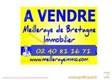 Vente terrain La Meilleraye de Bretagne (44520)
