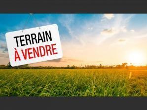 Vente terrain Vertheuil 88000€ - Photo 1