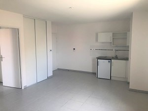 Location appartement La salvetat saint gilles 510€ CC - Photo 1