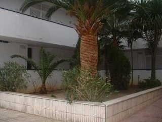 Venta  apartamento Roses santa-margarita 150000€ - Fotografía 3