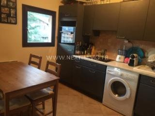 Rental apartment Saint-martin-vésubie 370€ CC - Picture 11
