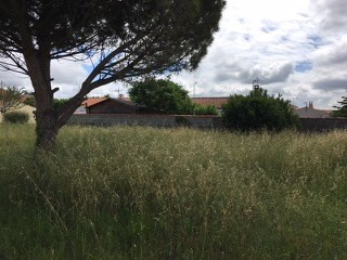 Vente maison / villa Lagord 200 000€ - Photo 2