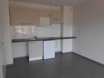 Rental apartment La salvetat-saint-gilles 510€ CC - Picture 1